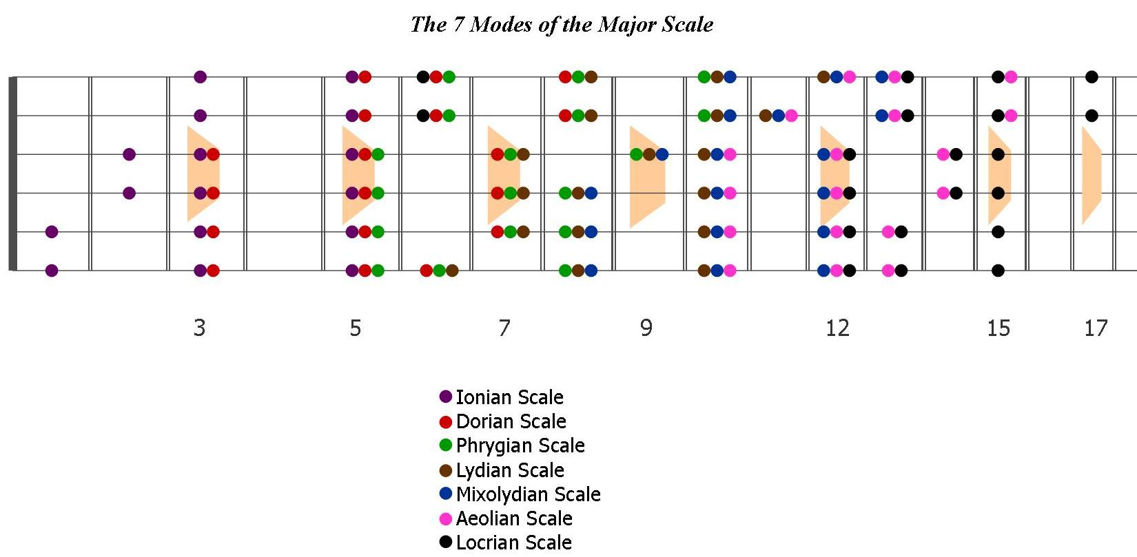 Fret Scale Template Fanned Fretboard Templatedownload Free